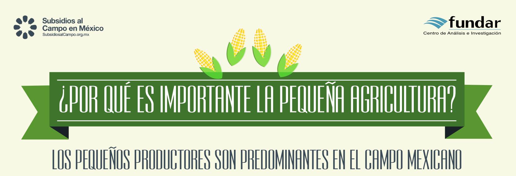 pequena_agricultura